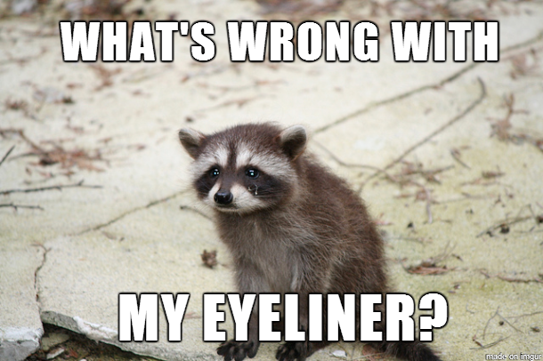 liquid eyeliner MEMEs Raccoon Eyes Makeup