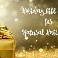 Holiday Gift Guide for Natural Hair Girls Main